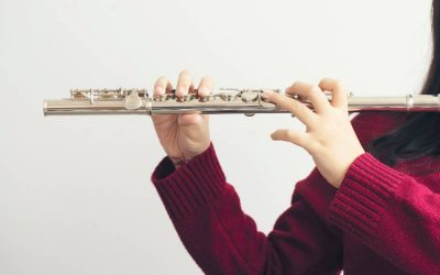 Meet the Woodwind Family